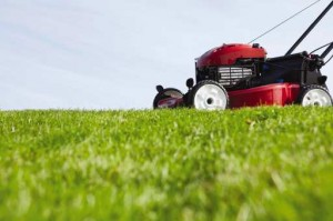 Maintaining-Your-Lawn-As-You-Age